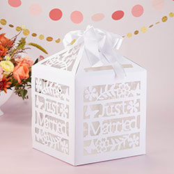 Just Married Birdcage Gift Card Box